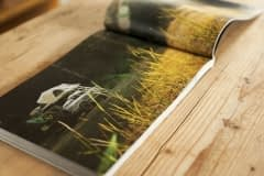 Eskapee-Mountain-Bike-Book007_1